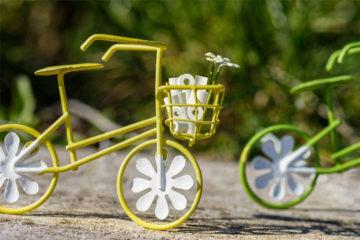 Yasemin Wüstenhagen Bild von Willfried Wende auf Pixabay, Karantine, Kuchen, Kriminalität – Hamsterkäufe in Corona-Zeiten Fahrrad Toilettenpapier Mehl