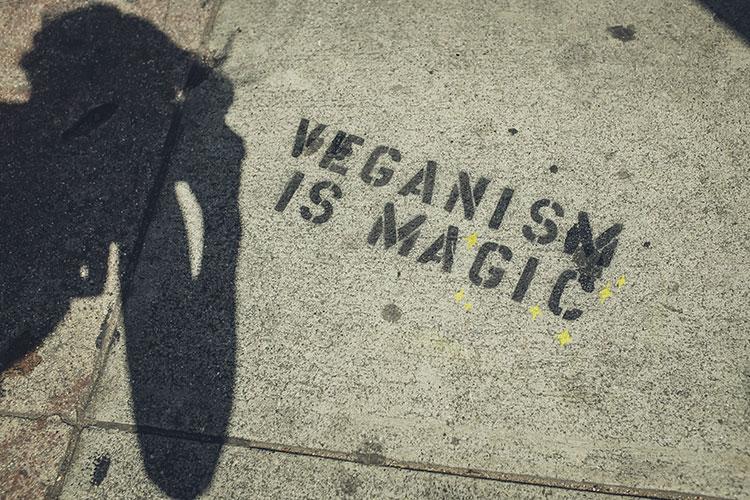Vegan sein ist toll