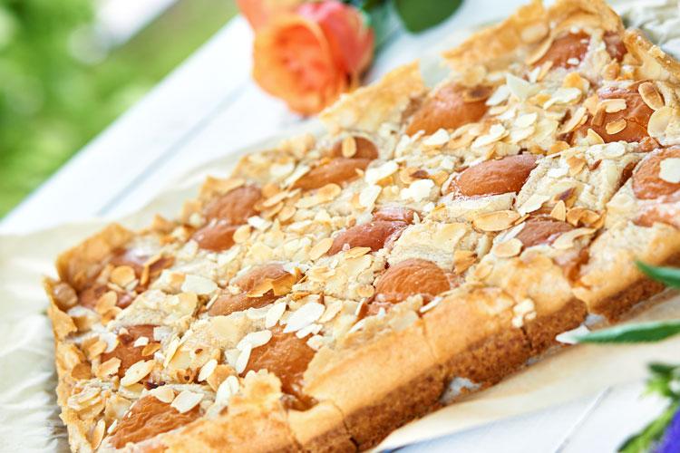 Veganer Käsekuchen mit Aprikosen Yasemin Wüstenhagen Rezept